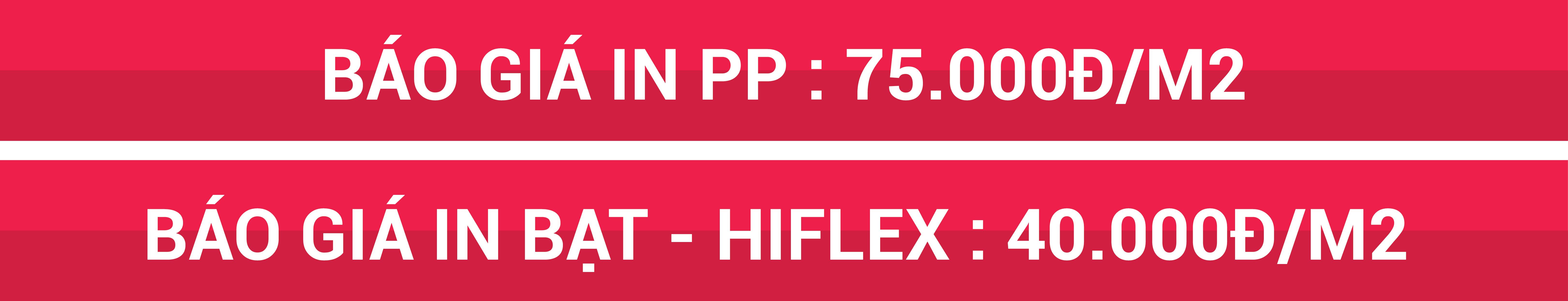 in-hiflex-in-pp